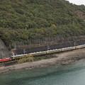 写真: DD51 サロンカーなにわ 紀勢本線紀伊浦上~下里20