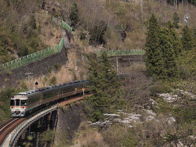 キハ85系ワイドビューひだ 高山本線下呂~焼石12