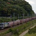 写真: EF210貨物 東海道本線彦根~米原04