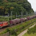 写真: EF510貨物 東海道本線彦根~米原01