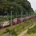 写真: EF510貨物 東海道本線彦根~米原03