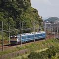 EF65北びわこ回送 東海道本線彦根~米原01
