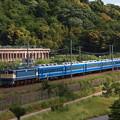 EF65北びわこ回送 東海道本線彦根~米原05