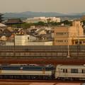写真: EF65メトロ13000系甲種 東海道本線京都~西大路01