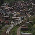 写真: 189系木曽あずさ 中央本線奈良井~藪原05