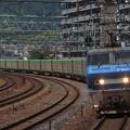 写真: EF200貨物  サントリーカーブ01