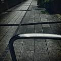 写真: 濡れた路地を通るには ~rain bow apple