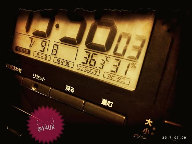 36.3℃ 31% ~助かる湿度&猛暑対策