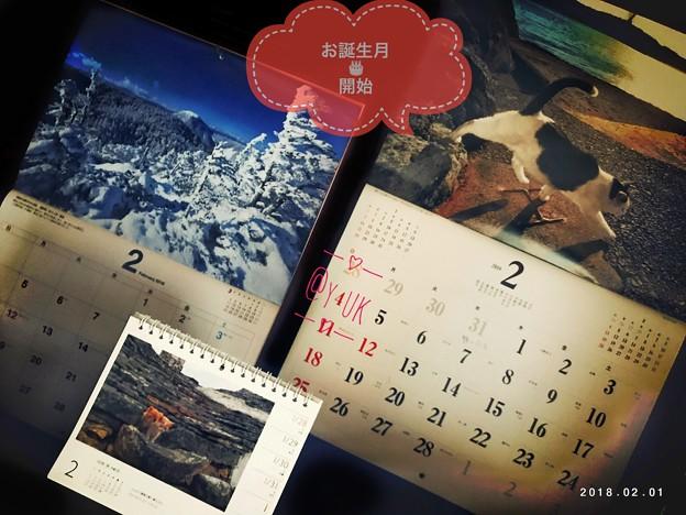 2月お誕生月スタート~カレンダー→岩合光昭にゃんこ静岡~信州長野雪山絶景