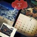 写真: 2月お誕生月スタート~カレンダー→岩合光昭にゃんこ静岡~信州長野雪山絶景