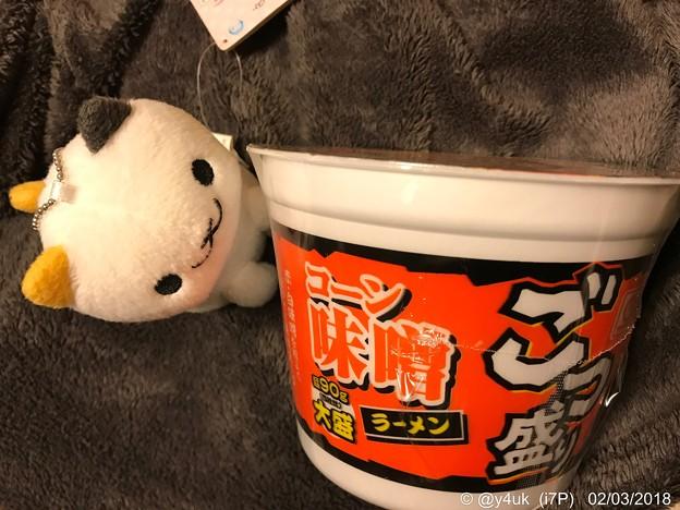 """Photos: 今夜も厳冬、今夜もカップ麺""""ごつ盛り 味噌""""~暖まるよ、にゃんこが持ってきてくれた涙"""
