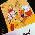 Congratulations! Many animals smile ;) heartwarming~black cat Apple, Love..:)~フィルム風 1/20秒