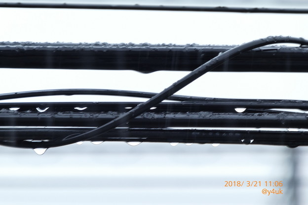 11:06 電線に滴る雫、雨はまさかの雪へ~春分の日、積もる雪に募る想い~spring snow slow(591mmシャッター優先)