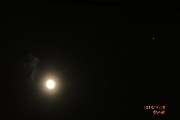写真: 薄雲と月、いつも見つめてくる明るい星☆仲良し(°▽°)月暈 光環~Flower moon, cloudy & star [手持ち 130mm]