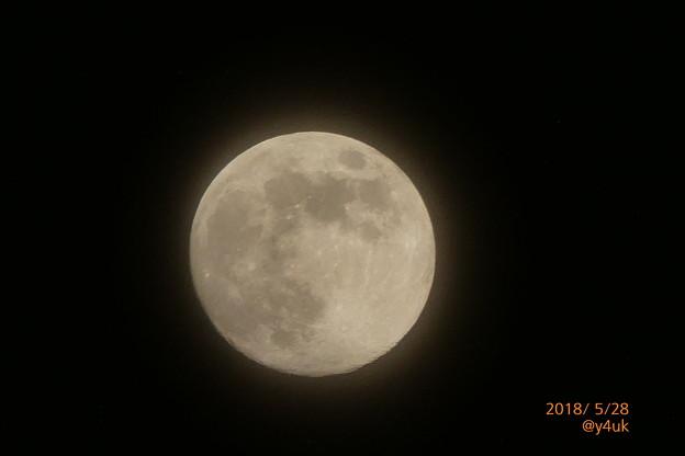 Flower Moon 5月の満月、薄雲の中から~窓から見えて手持ち速写[1500mm 60倍]