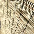 写真: New天津すだれ装着!七夕に願いを込め吊り下げせめて幸せになれますように。200人死亡西日本豪雨災害猛暑に温かい他人たち元気でいられますように。YOSHIKIも1,000万寄付と言葉で応援してます涙!
