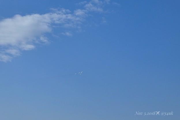 写真: 13:39秋晴れ抜ける青空Uターン1分後いきなり北方向から未確認飛行物体接近!鳥だブルーインパルスだ!編隊が頭上もぅ近づいてくるぅ(°▽°)!(87mm/シャッター優先:TZ85)7日は立冬なのに蝉が