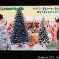 """写真: マツコも好きな""""お値段以上""""のクリスマスツリーは右の雪の「これ可愛い!」クリスマスツリーの世界「木の3大ブランド。安くなった。ヌードツリー。ノスタルジーに浸れる」飾っても1人だけでは寂しすぎて…しまう"""