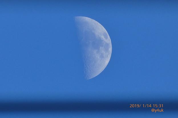 カサカサお肌の半月、電線の向こう~きみも見ただろうか?現在も覚えてるだろうか?元気でいるだろうか?会いたい時よ戻れ~寒い連日乾燥の青い空の真下で~Halfmoon(1500mm/ISO80:TZ85)