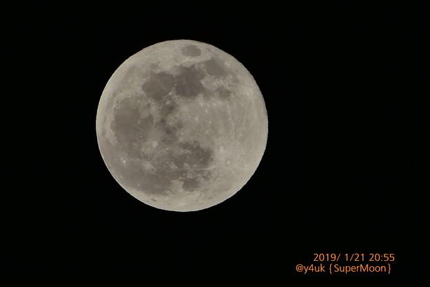 """20:55今年初""""スーパームーン満月""""寒い乾燥しきった夜空に丸く微笑んで願いを込めて歌う~キミも見てる?1つの奇跡Fly me to the SuperMoon(1500mm/スポット測光:TZ85)"""