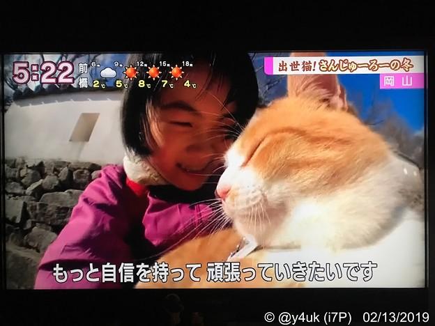 """NHK""""岡山・備中松山城に元野良猫さんが城主に""""30分も上にあるお城でも""""さんじゅーろー""""会いたくて大人気!人懐っこい。少女は嬉しくて号泣「自信を持って頑張っていきたいです」猫は生きる力になる会いたい"""