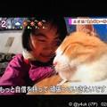 """写真: NHK""""岡山・備中松山城に元野良猫さんが城主に""""30分も上にあるお城でも""""さんじゅーろー""""会いたくて大人気!人懐っこい。少女は嬉しくて号泣「自信を持って頑張っていきたいです」猫は生きる力になる会いたい"""