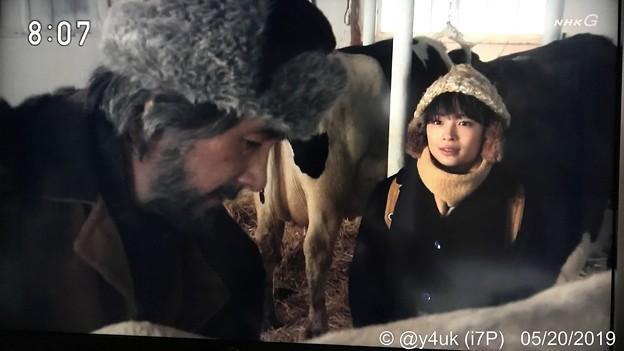 """NHK""""なつぞら""""北海道編ラスト:じいちゃん「牛をほっとけねえべ。他人行儀な挨拶はやめれや」なつ「うん、また帰ってくるから」じいちゃん「気つけて行け」~1人思いがあふれ嗚咽シーンに嗚咽(ToT)エモい"""
