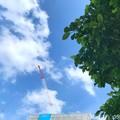 "Photos: 5.15旅先その3.青空雲+クレーン+新緑=""なつぞら""5月なのに暑い夏…五輪の様に近代が次々どんどん育ち立って消える空ゆく街。情緒が思い出が緑が自然が人が破壊され消えてゆく…旅の途中、愛をください暑"