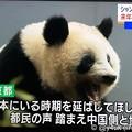 "NHK首都圏ネットワーク""シャンシャン中国への返還、来年12月末まで延長""「日本にいる時期を伸ばしてほしい。都民の声 踏まえ中国側と協議」辛い暗い日々に朗報ハッピーニュースキター(●´ω`●)会いたい"