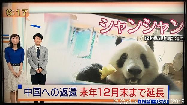 "NHK首都圏ネットワーク""シャンシャン中国への返還、来年12月末まで延長""辛い暗い偏見の日々に朗報ニュースキター(●´ω`●)やはり元気笑顔の源大好きでも愛するほど複雑心境きみ人生思えば別れたほうが…"