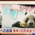 "Photos: NHK首都圏ネットワーク""シャンシャン中国への返還、来年12月末まで延長""辛い暗い偏見の日々に朗報ニュースキター(●´ω`●)やはり元気笑顔の源大好きでも愛するほど複雑心境きみ人生思えば別れたほうが…"