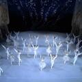 Photos: クラシックTV.mediciプレ・オープン記念 チャイコフスキー国際コンクール2019の模様を全編無料配信!バレエやってたチャイコといえば3大バレエ~♪でもピアノ曲も弦楽室内楽も最高♪Xmasにマスト