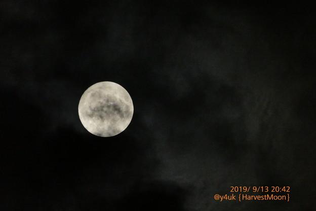 """20:42_9.13HarvestMoon""""中秋の名月""""雲間から奇跡的に現れ一瞬で消えたお月見◯千葉人も見えた?「避難情報などの伝達の手段確保に追われる…」(750mm/スポット測光/WB:TZ85)"""