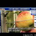 """Photos: NHKニュース645「心配の目を向けてもらっていることが励みになると思う」""""即位礼正殿の儀""""ゆかりの深い人は台風被害の長野りんご農家「毎年のようにスキー訪問りんごごくごく飲んで頂けた登山も趣味【動画】"""