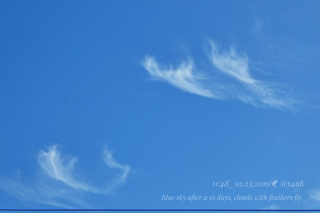 Photos: 11:48_10.23Blue sky after a 10days, clouds with feathers fly~10.13台風一過ぶりの青空、羽が飛ぶ雲踊る秋晴れと電線(82mm:TZ85)
