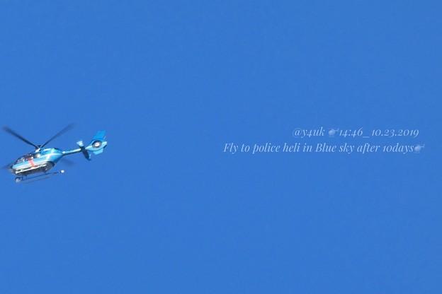 Photos: 14:46_10.23Fly to police heil in Blue sky after 10days~台風一過から10日ぶりの秋晴れ青空!空は被災地へ多忙自衛隊警察他(1500mm:TZ85)
