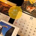 Photos: 11.1霜月Start今年あと2ヶ月もぅXmas気分あがらない…オレンジの11月♪京都ねこの品の良さ、ススキの信州☆岩合光昭にゃんこカレンダー10年くらい買い続けてる来年のも購入☆売り切れ前に急ごう!