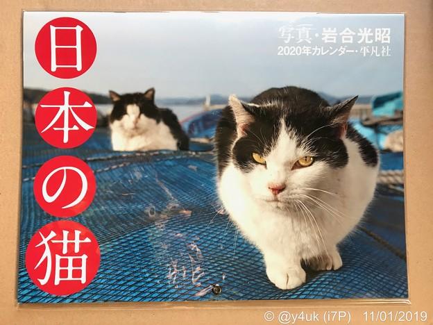 """10.29即注文11.1着""""日本の猫カレンダー2020""""岩合光昭さんのは何十年も毎年購入!ねこ写真家最強!写真が生きてる!買えてよかった!生きる支え。ずっと眺めてられる。激安なのも優しい人柄からか猫か"""