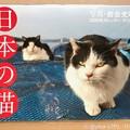 """Photos: 10.29即注文11.1着""""日本の猫カレンダー2020""""岩合光昭さんのは何十年も毎年購入!ねこ写真家最強!写真が生きてる!買えてよかった!生きる支え。ずっと眺めてられる。激安なのも優しい人柄からか猫か"""