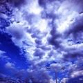 Photos: 9.30旅先その2.blue sky cloud street light shot on iPhone7Plus~遥か遠くの空に到着。したらこんな空(3ヶ月前と同じ場所へ今日12.2雨後旅って来た)