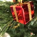 Photos: 12.2旅先その5.毎年恒例XmasTreeからのPresent Box Red~1年ぶりの再会☆ここのクリスマスツリーも些細で小さいけど毎年楽しみに12月あえて予約し来ること13年~変わらぬ優しさ☆