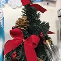 Photos: 12.2旅先その6.Mini XmasTree松ぼっくり&赤リボン♪小さなクリスマスツリーも好き(^^)美味しそう松がお菓子の様で食べたい愛をください小さな幸せに気づく事ができたから撮れた些細で誰も…