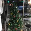 12.12_17:21夜旅先その4.Xmas night Concert, XmasTree~フラフラ到着お出迎えクリスマスツリー&スタッフ総出!体調心身ヤバくも感動クラシック生演奏【今年ラストUP】