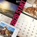 "Photos: ""2020""START.今年こそは色々と思った元日。カレンダー3つ今年も付け替え。御用達岩合光昭2つ1月高知&鎌倉、養命酒カレ信州中央アルプス初日の出に光環虹。今年もネコ大好き!正月ぽい事これだけ癒し"