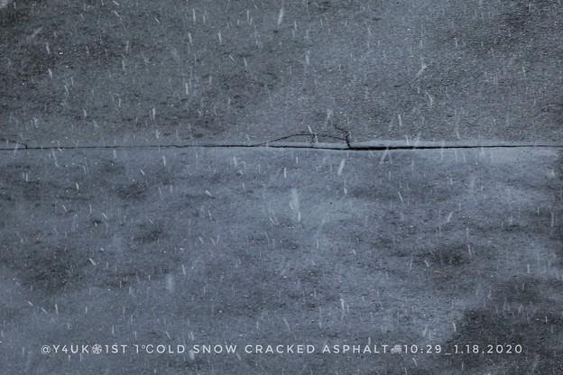 10:29_1.18.2020*1st 1℃old Snow Cracked Asphalt~今冬初雪1℃は降る午前。やっと冬らしい凍える日でした病気になるがシャキッともする時折天使は舞い降りこれぞ冬