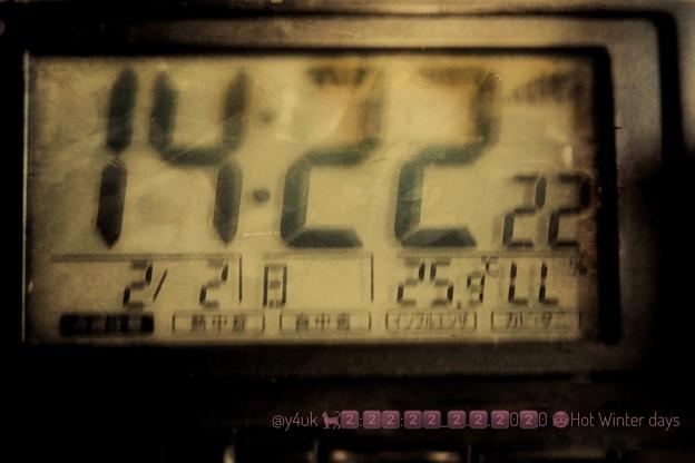 2:22:22_2.2.2020 25.9℃ Hot Winter days~にゃんこだらけの日も暖冬夏気温…寒暖差と先日の旅で風邪…2月お誕生月。暑さ出すボケ表現(クリエイティブジオラマ:TZ85)