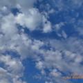 10:04_2.4.2020 My Birthday's Sky~お誕生日の午前の空は雲が多いけど青空が覗いていた。午後は曇りになった、雲で寒くなった風邪他こんな最中、無料パンケーキ夜外食無理。今月中