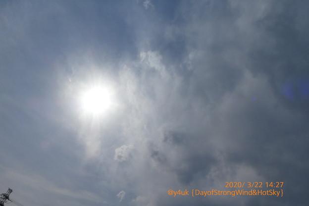 3.22 Day of Strong wind & Hot sun cloud sky~30℃急すぎる暑さ次日15℃(~_~;)強風も春の風と思えず台風と新型コロナにホコリ舞う異常気象*東京もぅ桜満開