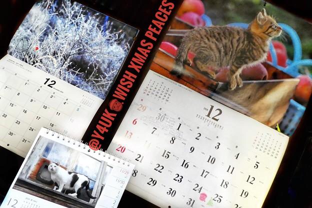 もぅ12月Wish Xmas Peaces!師走…過去最速最悪の年。毎月恒例カレンダーめくり岩合光昭にゃんこ青森りんご養命酒信州霜氷♪ねこは人を幸せに平和平穏笑顔癒しご縁猫好き温かい人猫に歌に会いたい