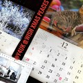 Photos: もぅ12月Wish Xmas Peaces!師走…過去最速最悪の年。毎月恒例カレンダーめくり岩合光昭にゃんこ青森りんご養命酒信州霜氷♪ねこは人を幸せに平和平穏笑顔癒しご縁猫好き温かい人猫に歌に会いたい